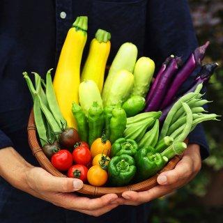 伝承野菜と季節の野菜おまかせセット