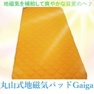 丸山式地磁気ベッドパッドGaiga(ガイガ)ダブルサイズ
