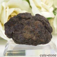 サハラNWA869隕石の標本 13.2gの画像