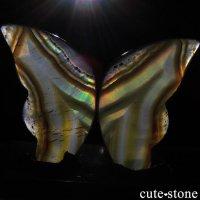 インドネシア産 アイリスアゲートの蝶(イリスアゲート バタフライ) No.12の画像