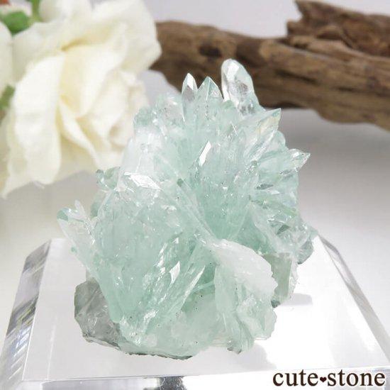 インド プネー産 グリーンアポフィライト&スティルバイトの原石 15.6gの写真0 cute stone