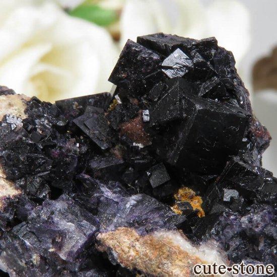 ドイツ Frohnau産 パープル〜ブラックフローライト No.2の写真4 cute stone