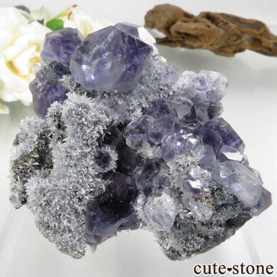 福建省 Xia Yang Mine産 パープルフローライト&クォーツの母岩付き原石 No.31