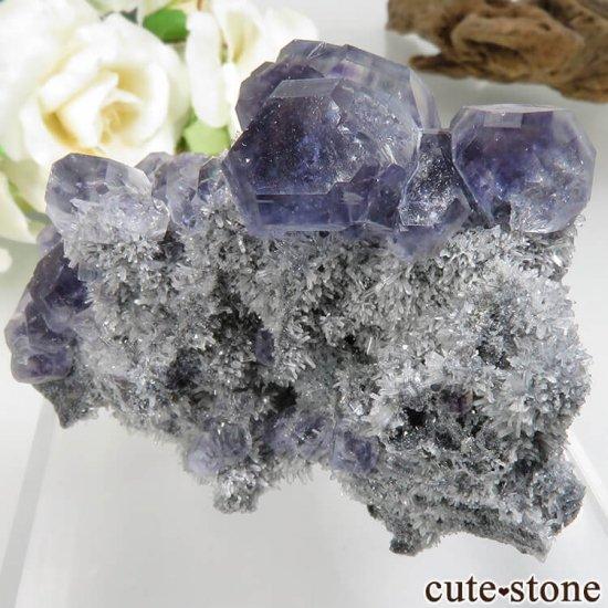 福建省 Xia Yang Mine産 パープルフローライト&クォーツの母岩付き原石 No.31の写真1 cute stone