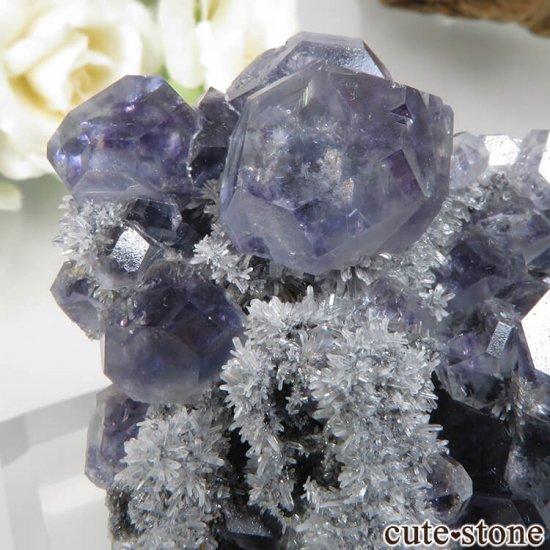 福建省 Xia Yang Mine産 パープルフローライト&クォーツの母岩付き原石 No.31の写真3 cute stone