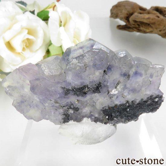 福建省 Xia Yang Mine産 ブルー×グリーンフローライトの母岩付き原石 No.33の写真0 cute stone
