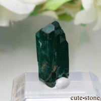 ナミビア Kaokoveld Plateau産のダイオプテーズの原石 No.6の画像