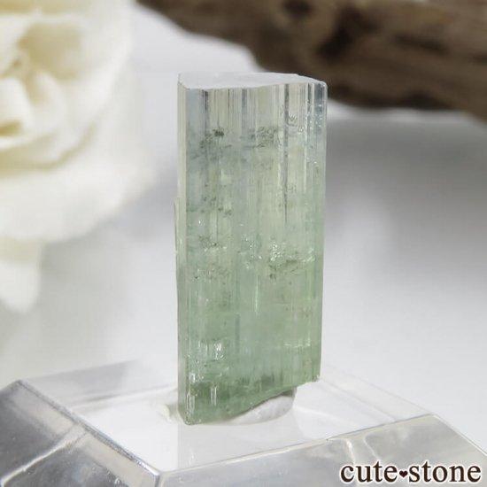 パキスタン Stak Nala産 グリーン×ブルーグリーントルマリンの結晶 No.14の写真1 cute stone