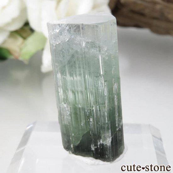 パキスタン Stak Nala産 グリーントルマリンの結晶 No.15の写真0 cute stone