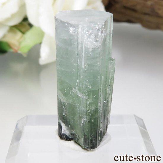 パキスタン Stak Nala産 グリーントルマリンの結晶 No.15の写真1 cute stone