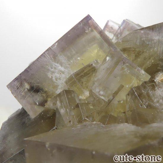 レディアナベラ Harvest Pocket産 フローライトの結晶(原石)No.1の写真4 cute stone