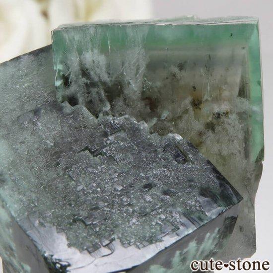 レディアナベラ Posison Ivy Pocket産 フローライトの結晶(原石)No.1の写真3 cute stone