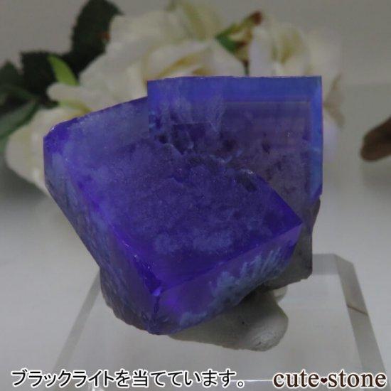 レディアナベラ Posison Ivy Pocket産 フローライトの結晶(原石)No.1の写真5 cute stone