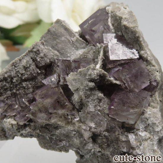 フランス Bergheim産 パープルフローライトの原石 No.1の写真2 cute stone