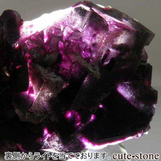 ナミビア Okorusu Mine産 パープルフローライトの原石 No.16の写真1 cute stone