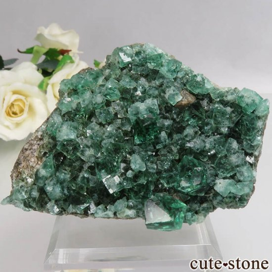 イングランド Diana Maria鉱山産 蛍光フローライトの母岩付き原石 No.13