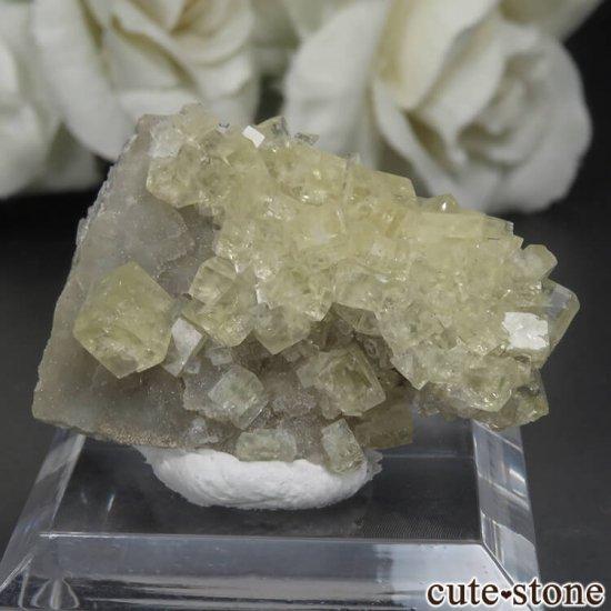 フランス Giromagny産 イエローフローライトの母岩付き原石 No.4