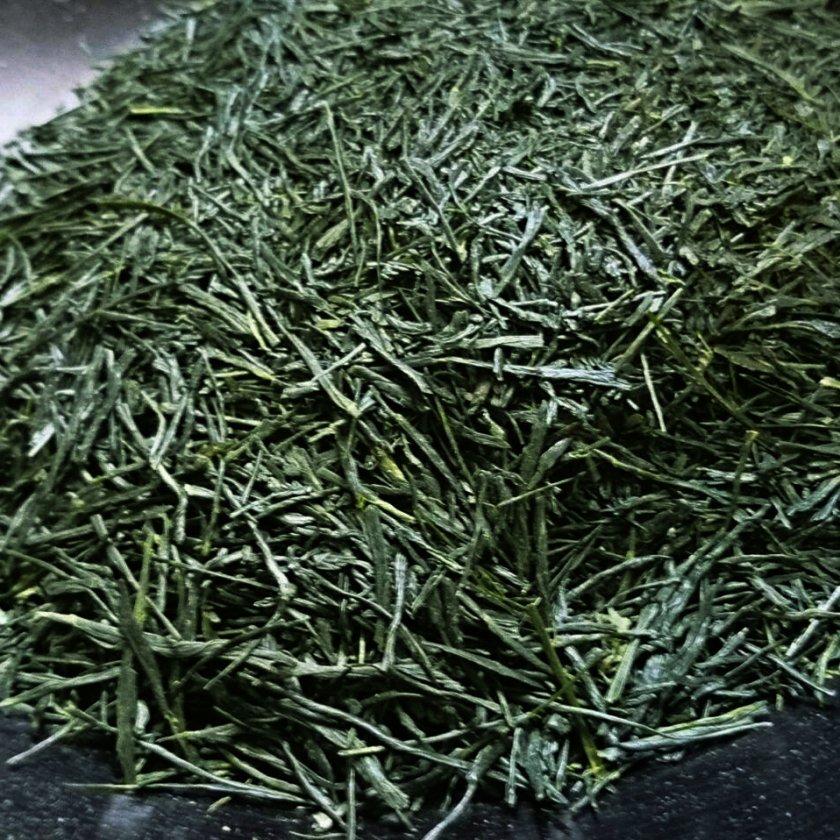 生茶「しまみどり」種子島茶 30g