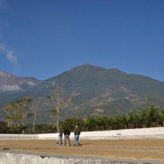 グアテマラ ラ・トラベシア《シティロースト》 200g