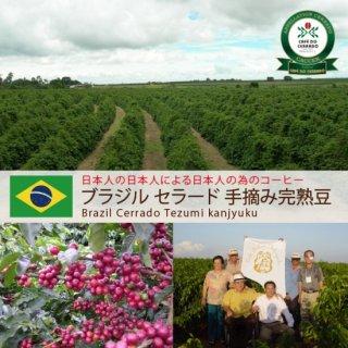 セラード 手摘み完熟豆(200g)