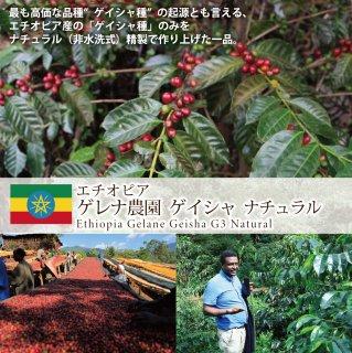 エチオピア  ゲレナ農園  ゲイシャ  ナチュラル (200g)