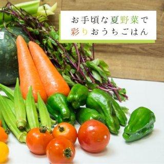 夏の野菜おまかせセット