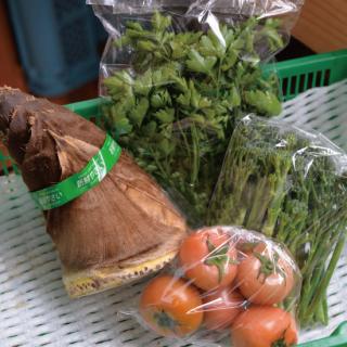 【お野菜約4種類】<br/>アクアパッツァも作れる春夏の野菜セット