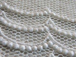 LR04005 ドット柄  綿刺繍チュール 15cm巾