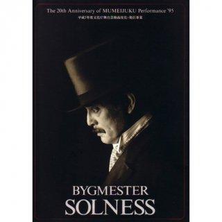 「ソルネス」パンフレット(1995年)