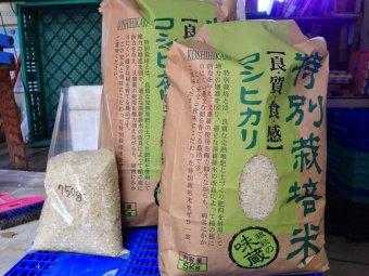 特別栽培    新潟コシヒカリBL    白米10kg