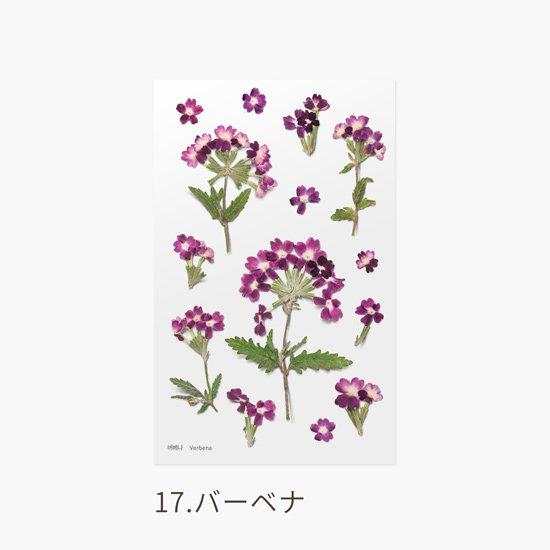 ラベンダーの押し花シール