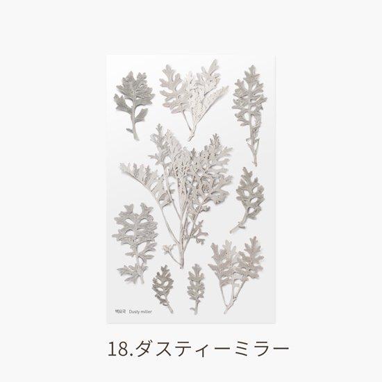 ゼラニムの押し花シール