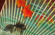 水うちわ 手描き 金魚 二重 [台座付]