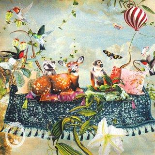 【フランス直輸入】空飛ぶ絨毯と動物たち