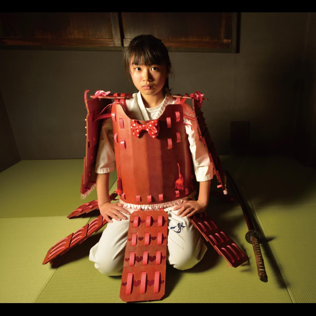 かみよろい(紙鎧) - 歴史プラス(時空旅人公式通販サイト)