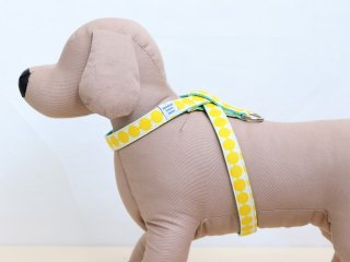 Globe  Harness<br>Yellow