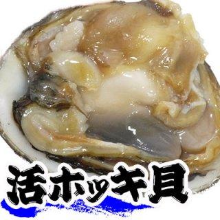(冷蔵)三沢・八戸産ホッキ貝1個(10cm以上)