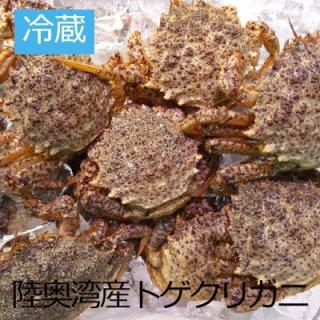 (冷蔵)陸奥湾産 トゲクリガニ 【メス】(ボイル)4ハイ