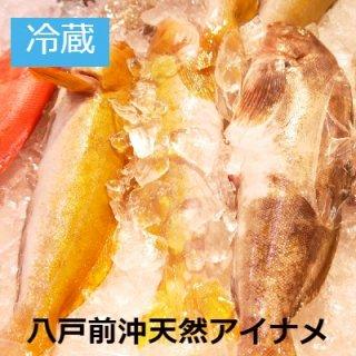 [冷蔵]八戸前沖産 活〆天然アイナメ 1.2kg