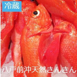 [冷蔵]【数量限定】八戸前沖産 天然きんきん550g