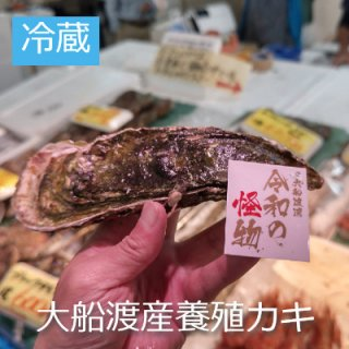 (冷蔵)岩手〜宮城産養殖真牡蠣 1コ