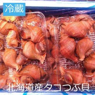 (冷蔵)北海道産活タコつぶ貝5個〜6個(約550g前後)