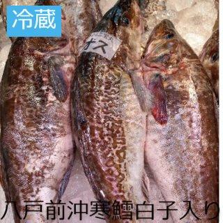 (冷蔵)生真鱈 【オス】1本 約4�以下