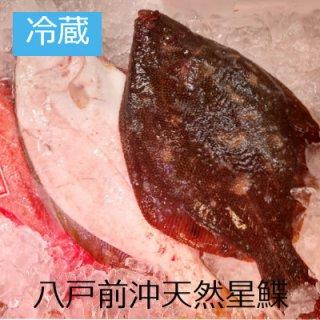 [冷蔵]【2匹限定】超高級魚八戸前沖天然星鰈 約2.5�越え超特大サイズ