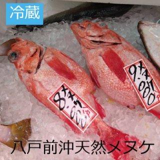 [冷蔵]【1匹限定】八戸前沖天然メヌケ
