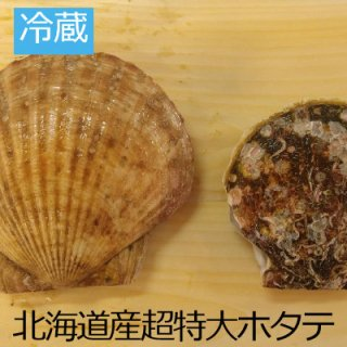 [冷蔵]北海道天然超特大ホタテ直径 14�〜15�