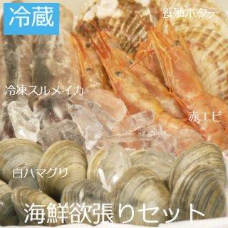 【冷蔵】海鮮欲張りセット(冷凍するめイカ×2・赤エビ×10・養殖ホタテ×5・本ハマグリ×10)3人〜5人用