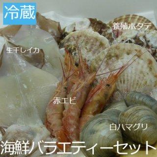 【冷蔵】海鮮バラエティーセット(生干しイカ×2・赤エビ×5・養殖ホタテ×5・本ハマグリ×5)3人〜
