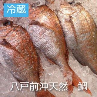 [冷蔵]八戸前沖天然鯛