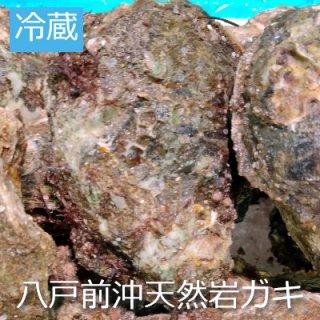 (冷蔵)八戸前沖産養殖岩牡蠣(岩ガキ)1コ